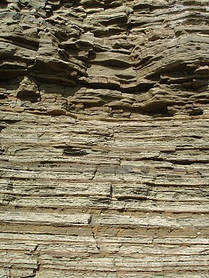 Turbidity current - Turbidite interbedded with finegrained dusky-yellow sandstone and gray clay shale that occur in graded beds, Point Loma Formation, California.