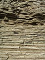 Turbidite-California.jpeg