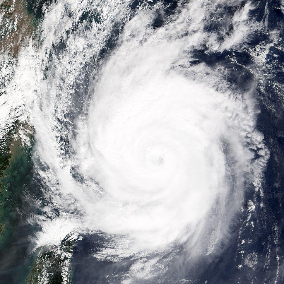 Typhoon Meari 2004