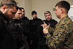U.S. & Romanian Forces Conduct Bilateral Training 150225-M-XZ244-163.jpg