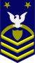 Master Chief Petty Officer of the Coast Guard (reserve)