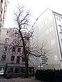 Ul. Chmielna 28, Warszawa (3).jpg