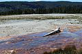 Upper Geyser Basin Yellowstone 06.JPG