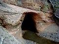 Vīksnu ala Salacas krastā 2002-05-01.jpg