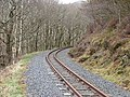 Vale of Rheidol Railway - geograph.org.uk - 724468.jpg