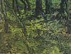 Van Gogh - Unterholz mit Efeu1.jpeg