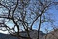Varese - Sacro Monte 0201.JPG