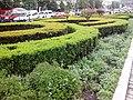 Vencel-tér - Wenceslas square - panoramio (2).jpg