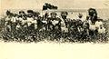 Vendanges dans l'Hérault à la fin du XIXe s côtes-de-thongue.jpg