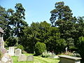 View from the churchyard - geograph.org.uk - 841774.jpg