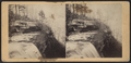 View from the top of Kauterskill Fall, by E. & H.T. Anthony (Firm) 2.png