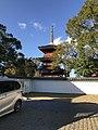 View of Sanjunoto Tower of Buzen-Kokubunji Temple 4.jpg
