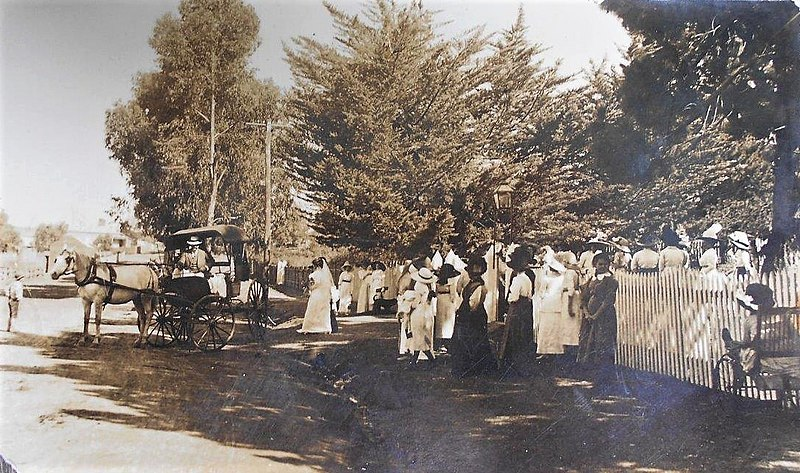 File:Vintage wedding in Yea, Victoria - circa 1910 (33259823132).jpg