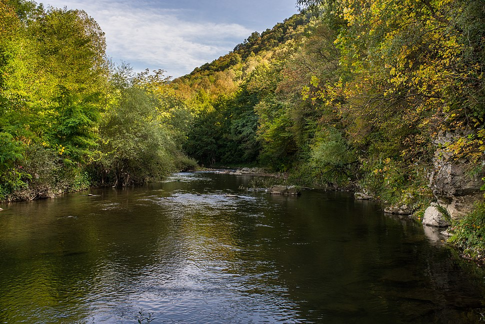 Vlasina reka2