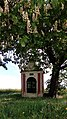 Volyně, výklenková kaple u cihelny (03).jpg