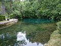 Vrelo reke Mlave, Žagubica 33.jpg