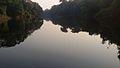Vue du fleuve le Dja.jpg