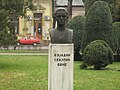 Vujadin Sekulić-Bane.jpg