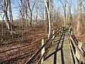 Walkway - Hadley Falls Canal Park - DSC04452.JPG