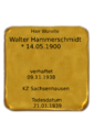 Walter Hammerschmidt.png