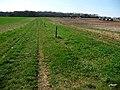 Wayfarer's Walk near East Hoe Manor - geograph.org.uk - 1269529.jpg