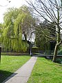 Weeping willow and footbridge near the mill leat - geograph.org.uk - 397465.jpg