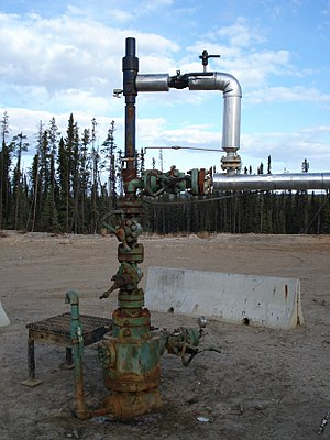 Christmas tree (oil well) - Image: Wellhead plunger lift