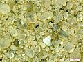 Western Desert Egypt sand.jpg