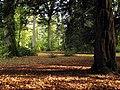 Westonbirt Arboretum - geograph.org.uk - 69573.jpg