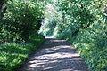 Whitwell Ashknowle Lane 2.JPG