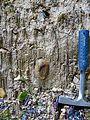 WikiProjekt Landstreicher Geotop Eistobel 35.jpg