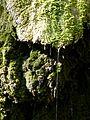 WikiProjekt Landstreicher Wasserfall Hinang 33.jpg