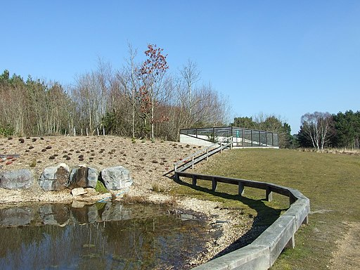 Wildlife Pond and Reptilian Enclosure, Avon Heath Country Park - geograph.org.uk - 1737602