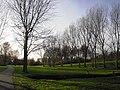 Wilhelminapark - Rijswijk - 2009 - panoramio (9).jpg