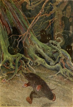 The Rat in the forest. Drawn by Paul Bransom.