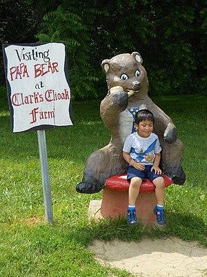 Clark's Elioak Farm - Image: With Papa Bear
