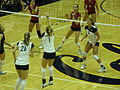 Women's volleyball, USC at Cal 11-22-08 1.JPG