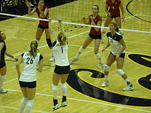 California Golden Bears Women S Volleyball Wikipedia