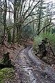 Woodland Road - geograph.org.uk - 797446.jpg