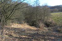 Wuppertal Metzmachersrath 2015 025.jpg