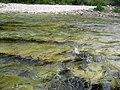 Www.neretva.rafting.ba - panoramio - Neretva Rafting (36).jpg