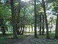 XVIII-wieczny park w Parcicach.JPG