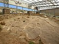 Yacimiento de icnitas de dinosaurio de Las Cerradicas 01.jpg