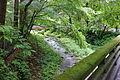 Yagasaki River - Karuizawa, Japan - DSC01965.JPG