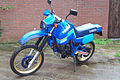 Yamaha XT600Z Tenere 1VJ.jpg
