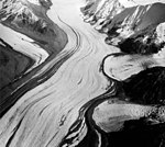 Yanert Glacier, valley glacier with merging mountain glaciers on the right, August 27, 1964 (GLACIERS 5104).jpg