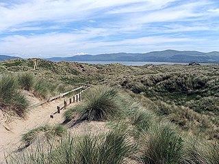 Ynyslas Human settlement in Wales