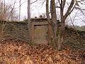 Židov hřbitov Rabštejn 20.jpg