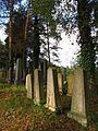 Židovský hřbitov v Trhovém Śtěpánově 6.jpg