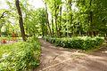 Виноградів Парк 4643.jpg